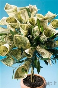 Wedding Gift For Sister Money : Kaip ?domiai supakuoti pinigus Zinau Kaip.lt