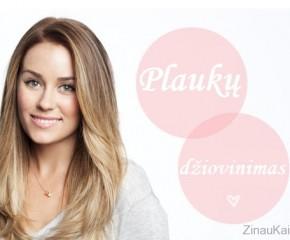 Kaip gražiai išsidžiovinti plaukus