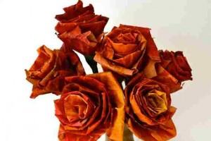 Kaip pasidaryti rožes iš klevo lapų