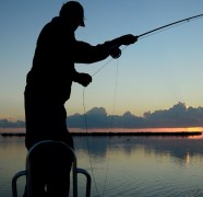 Kaip išsaugoti šviežią žuvį ir neturint tinklelio