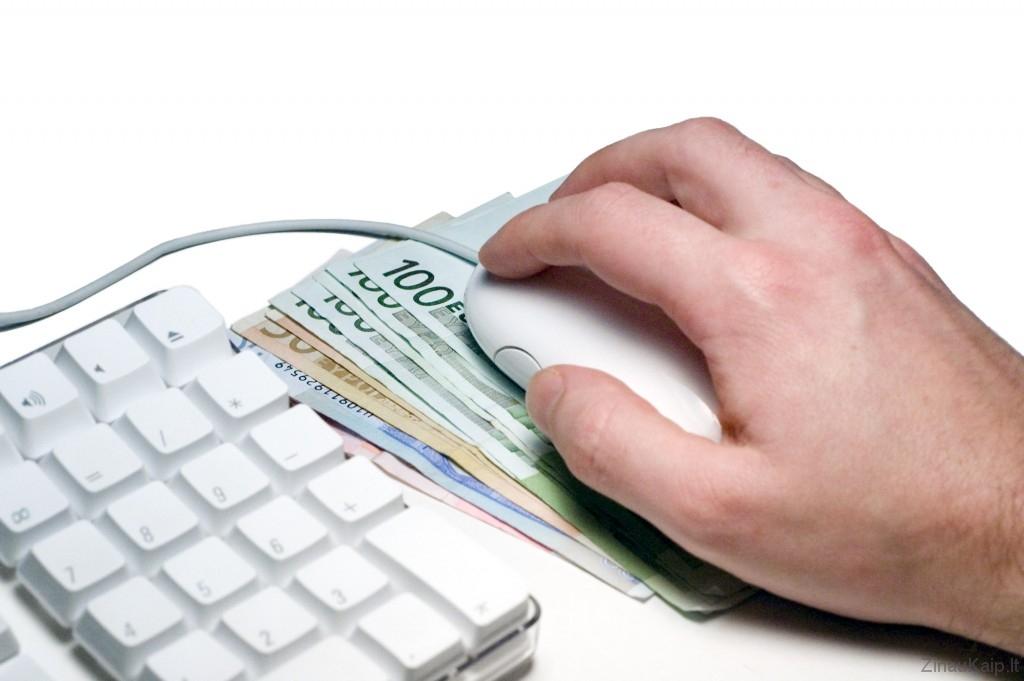 pinigai_internetu_skolinimasis