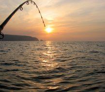 Kaip pasiruošti rudeninei žūklei: efektyvi atributika sėkmingai žvejybai
