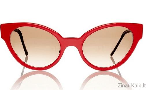 kaip-issirinkti-akinius3