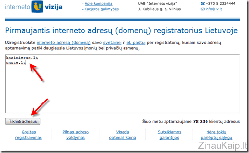 kaip_uzregistruoti_domena