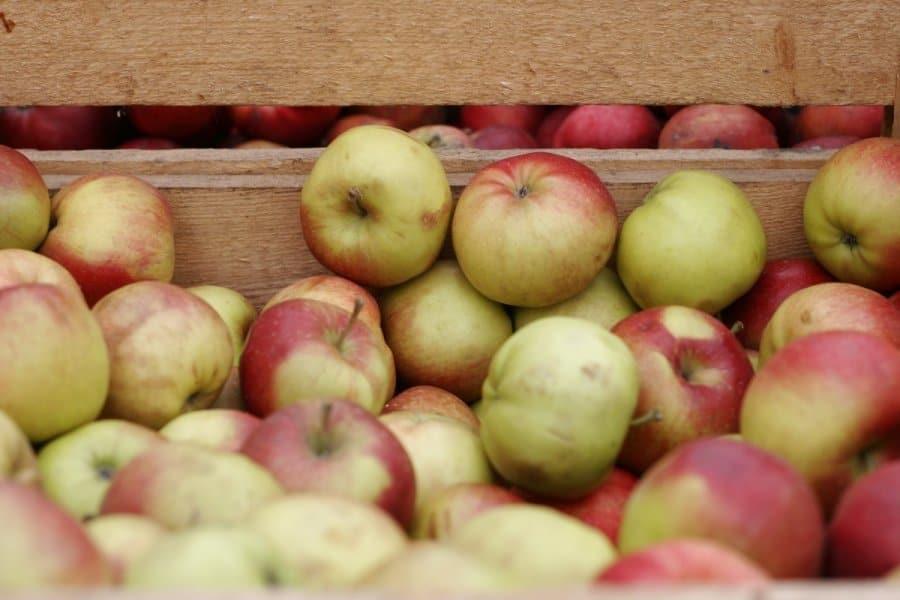 Kaip išlaikyti obuolius per žiemą